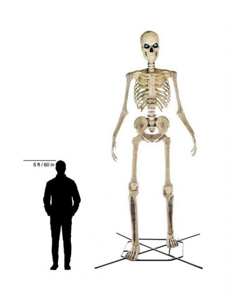 Home Accents Holiday 12 ft Giant-Sized Skeleton